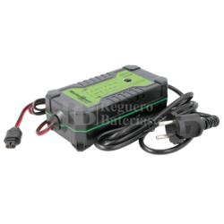 Cargador baterías Agm Gel Wet Mf LiFePO4 12V 24V