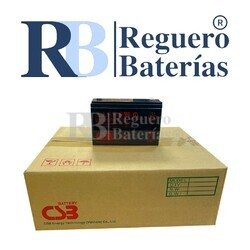 Batería HR1224WF2F1 12 V 6,5 A Caja 12U