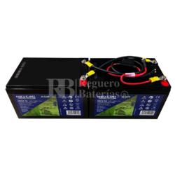 kit baterías 24 Voltios 14 Amperios C/Cables HG12-14EV