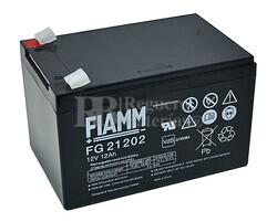 Batería 12 Voltios 12 Amperios Fiamm FG21202