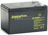 Batería 12 Voltios 12 Amperios MV12120