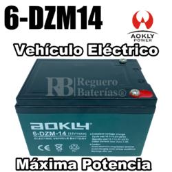 Batería 12 Voltios 14 Amperios 6DZM14
