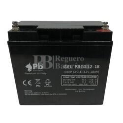 Batería 12 Voltios 18 Amperios PBCG12-18