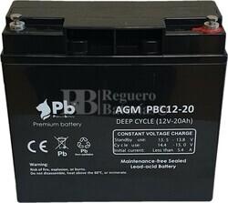 PBC12-20 Batería 12 Voltios 20 Amperios