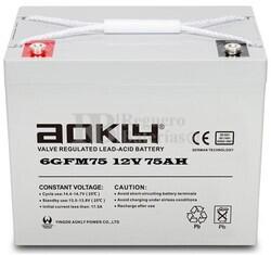 Batería 12 Voltios 75 Amperios Aokly 6GFM75