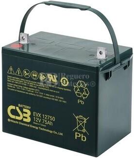 Batería 12 Voltios 75 Amperios CSB EVX12750
