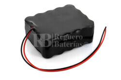 Batería tijeras podar Pellenc 24 Voltios 5 Amperios