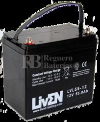 Batería 12 Voltios 55 Amperios LVL55-12