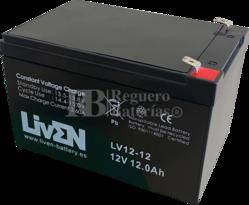 Batería Alarma de 12 Voltios 12 Amperios