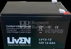 Batería Ascensores 12 Voltios 12 Amperios
