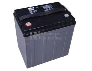 Bateria Ciclica de Alta Descarga FULLRIVER 8 Voltios 160 Amperios DC160-8A