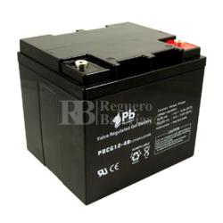 Batería de Gel 12 Voltios 40 Amperios PBCG12-40