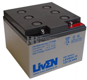 Bateria de Gel Puro 12 Voltios 24 Amperios LEVG24-12 (166x175x125)
