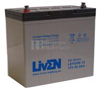 Batería de Gel 12 Voltios 50 Amperios Liven LEVG50-12