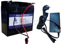 Batería de Litio Ferroso LiFePO4 12 Voltios 18 Amp. y cargador