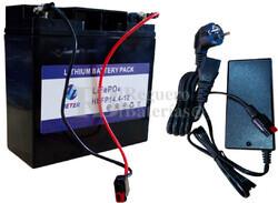 Batería Litio Ferroso 12 Voltios 18 Amp. y cargador
