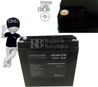 Batería de Litio Ferroso LiFePO4 12 Voltios 22 Amperios