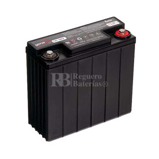 Bateria De Plomo Puro Enersys EP16 12 Voltios 16 Ah