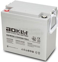 Batería Gel 12 Voltios 55 Amperios Aokly 6GFM55G