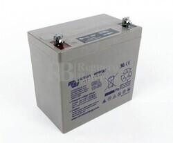 Batería GEL de Ciclo Profundo Victron Energy 12 Voltios 60 Ah