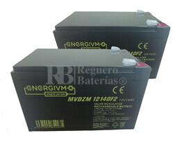 Baterías Patinete Roan 350W 24V R4 24 Voltios 14 Amperios