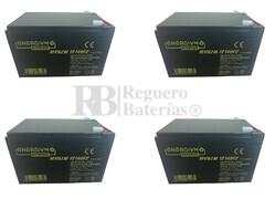 Baterías Patinete Roan 1000W 48V R6,5 48 Voltios 14 Amperios
