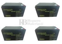 Baterías Patinete Roan 1000W 48V R10 48 Voltios 14 Amperios