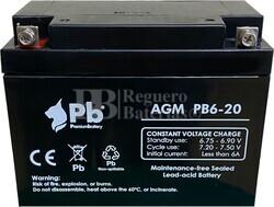 Batería Salvaescaleras 6 Voltios 20 Amperios