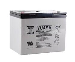 Batería 12 Voltios 80 Amperios Yuasa REC80-12 para aplicaciones cíclicas