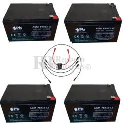 Baterías 48 Voltios 12 Amperios Vehículos Eléctricos y Conexiones