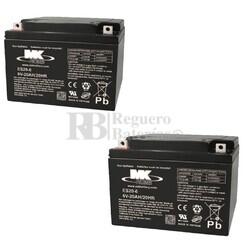 2 Baterías 6 Voltios 20 Amperios MK ES20-6
