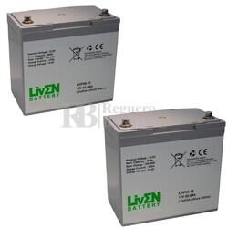 Baterías de Litio Scooter 12 Voltios 60 Amperios LVIF60-12S