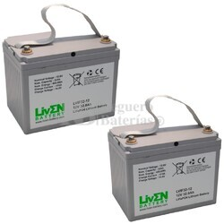 Baterías de Litio Scooter 24 Voltios 32 Amperios LVIF32-12