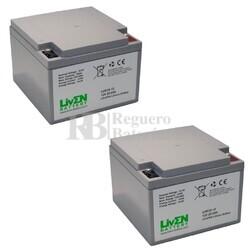 Baterías de Litio Silla Movilidad 12 Voltios 25 Amperios LVIF25-12