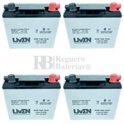 Baterías Moto Eléctrica 48 Voltios 22 Amperios LVH12-88W