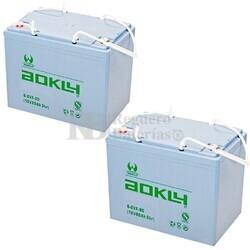 Baterías Movilidad 12 Voltios 80 Amperios 6EVF80