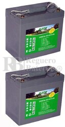Baterías silla de ruedas Gel 12 Voltios 55 Amperios HZY-EV12-55