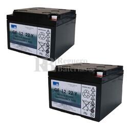 Baterías Sillas Movilidad 12V 22A Gel GF12022YF Sonnenschein