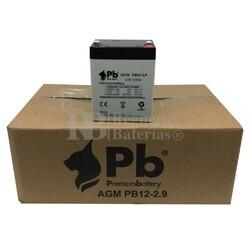 Caja 10 Baterías 12 Voltios 2,9 Amperios PBC12-2.9