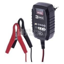 Cargador baterías 6 y 12 Voltios hasta 15 Amperios para AGM,GEL LI-ION,LIFEPO4