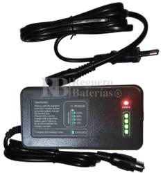 Cargador baterías Litio Carro de Golf LiFePO4