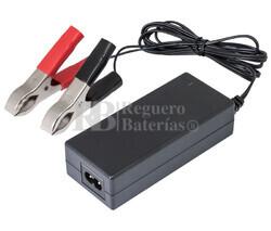 Cargador de 24 Voltios 2 Amperios para baterías de plomo ácido