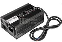 Cargador de baterías de Ion-Litio 48 Voltios 2 Amperios