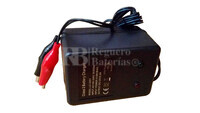 Cargador de baterías de plomo 12 Voltios 0,5 Amperios LC-2303