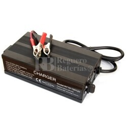 Cargador de Baterias de Plomo 12 Voltios 10 Amperios