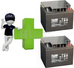 Conjunto de 2 Baterías AGM 12 Voltios 42 Amperios para Aplicaciones Ciclicas FIAMM FG24204