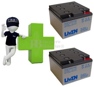 Conjunto de 2 bater�as de GEL 12 Voltios 24 Amperios para Aplicaciones Ciclicas LIVEN LEVG24-12