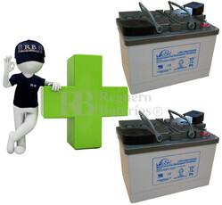 Conjunto de 2 Baterías De GEL 12 Voltios 65 Amperios para Aplicaciones Ciclicas Leoch LPG12-65