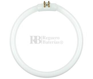 Fluorescente circular 22W-220V, para lupa HRV-1205