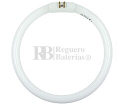 Fluorescente para HRV-1206